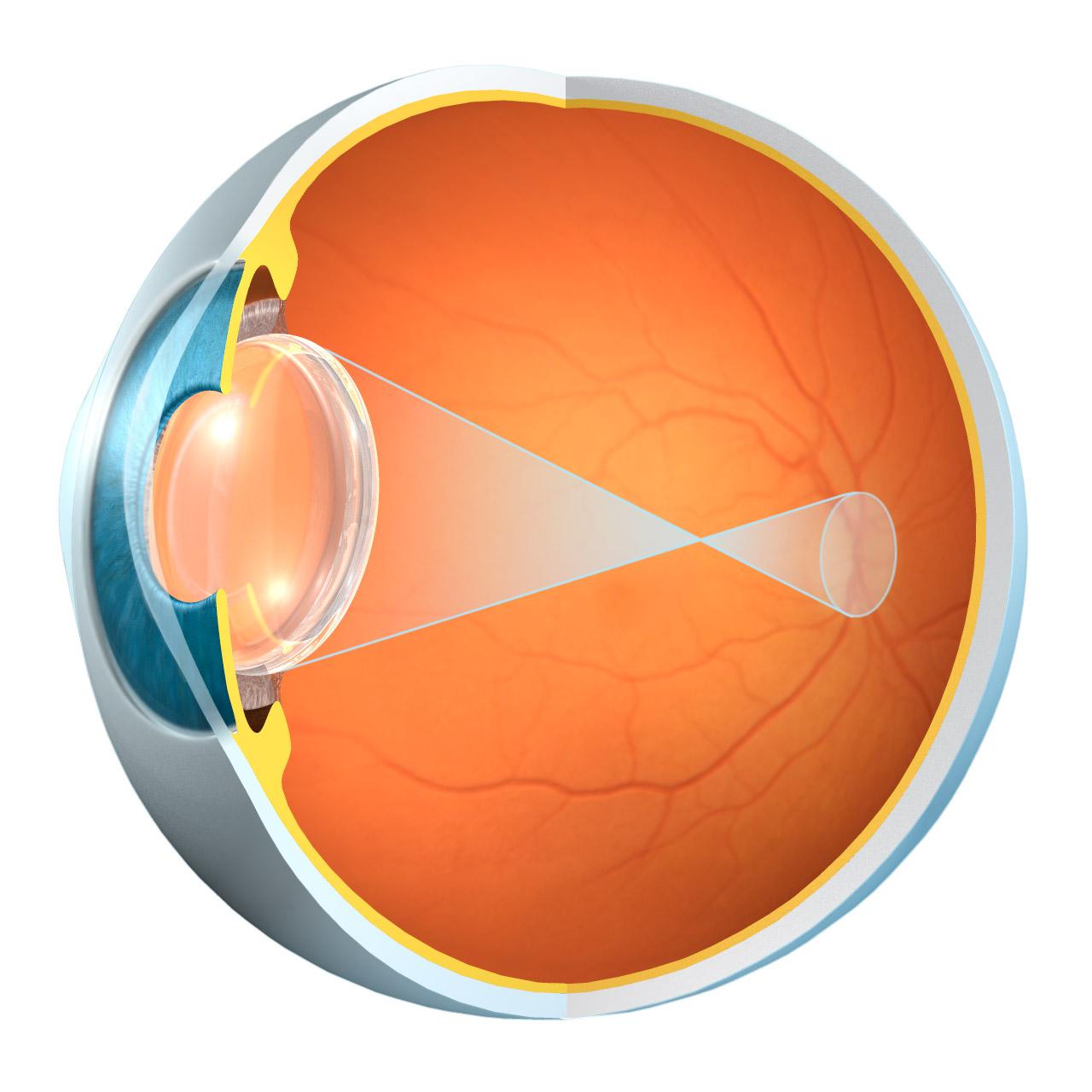 Eyeball diagram