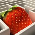 Strawberry Maze